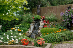 Les plus belles plantes d'été pour votre jardin
