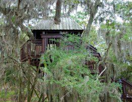 Cabane en bois dans les arbres